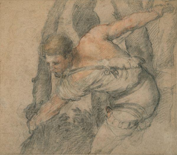 FJK 005  Bassano Jacopo